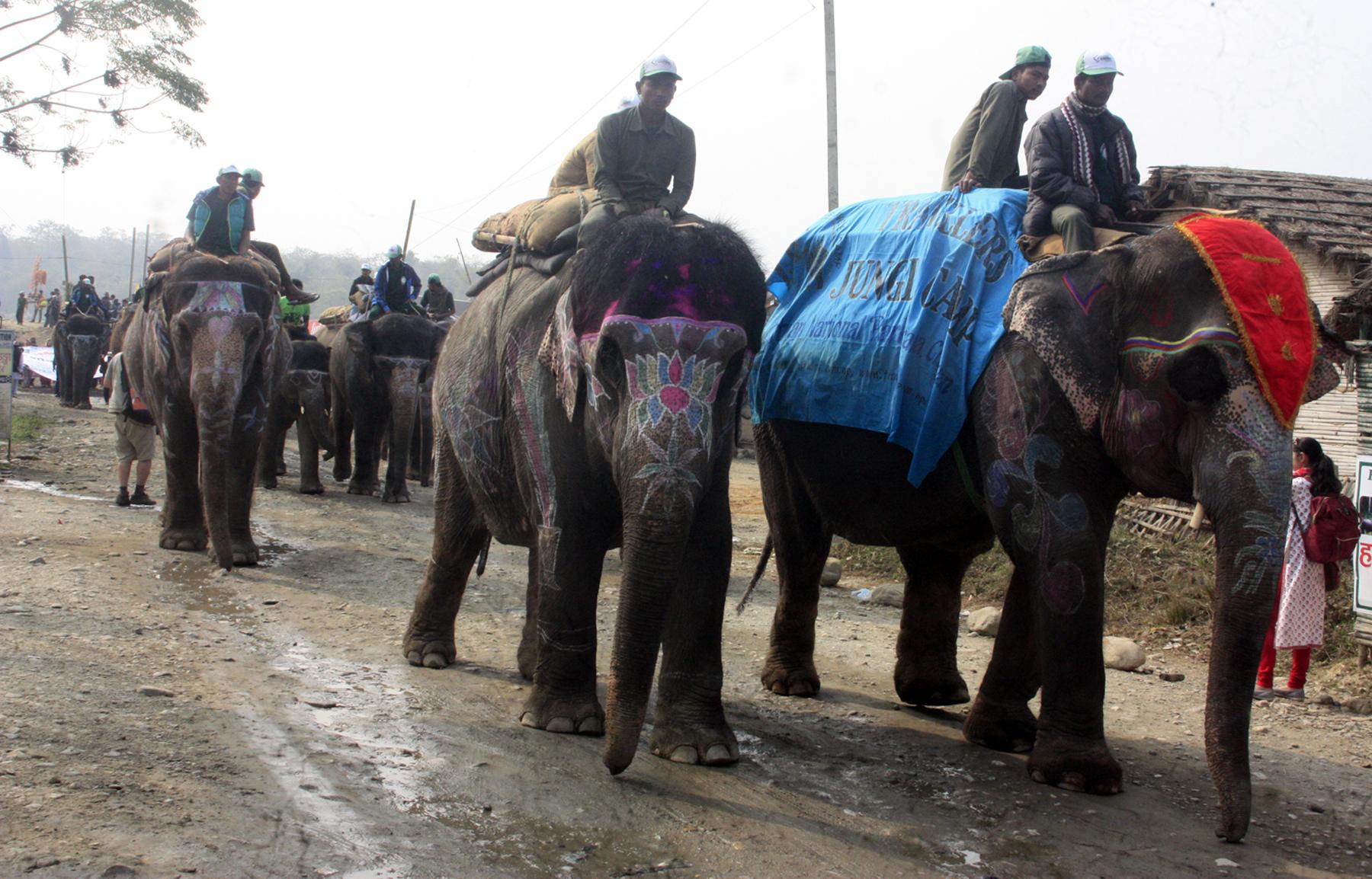 Elephant Festival kicks off in Sauraha of Chitwan