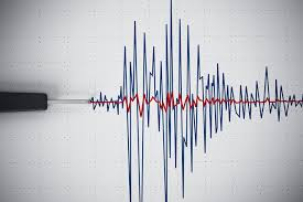 Earthquake shakes in and around Dhading district