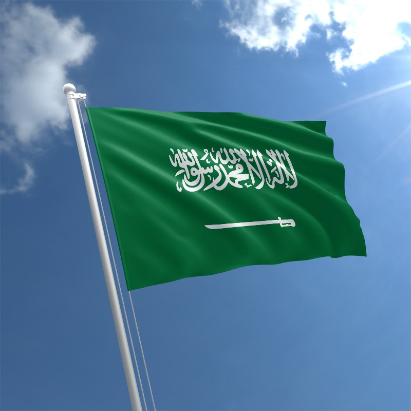 Saudi Arabia seeks death penalty for woman activist: rights groups
