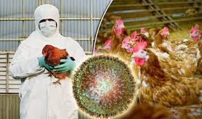 Deadly bird flu detected in Kathmandu